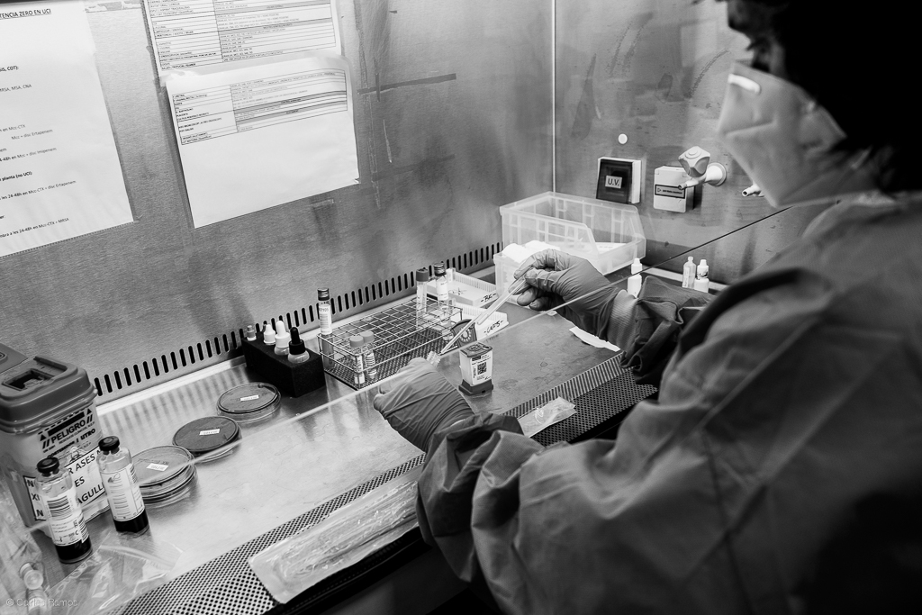 La Mar del Consorci del Laboratori Intercomarcal de l'Alt Penedès, l'Anoia i el Garraf amb seu dins de l'Hospital d'Igualada, analitza una de les proves de COVID-19 de tantes que li arriben cada dia - 22/05/2020