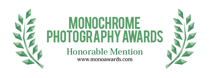 Honorable Mention in Editorial / Press, Contemporary issues category of Int'l Photography Awards